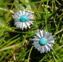 Daisy stud earrings E47